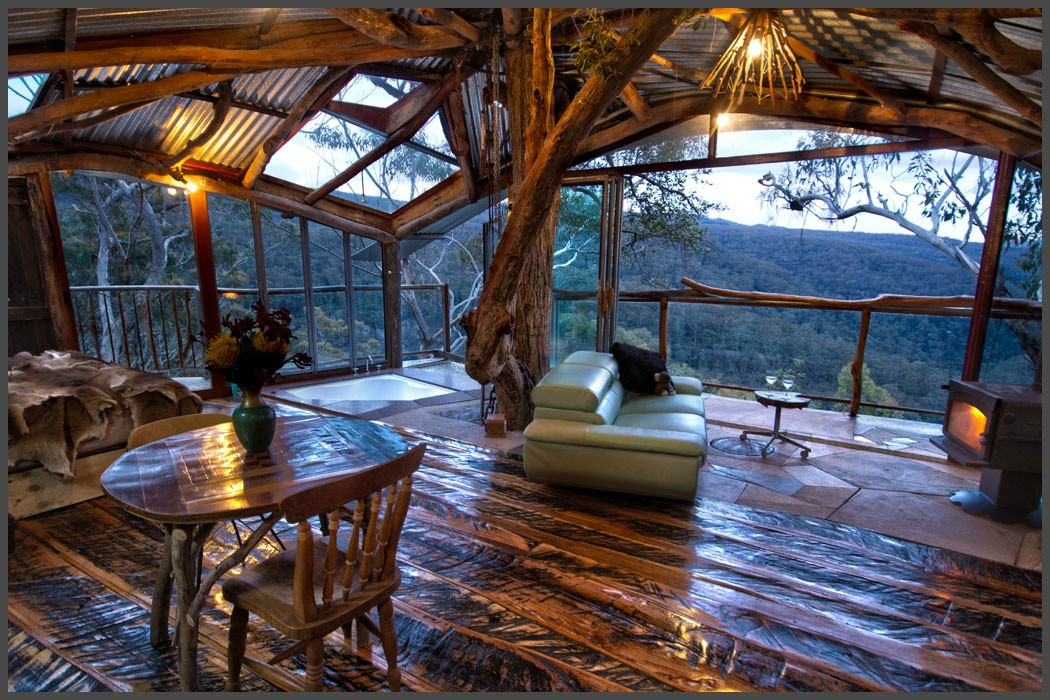 The World's Best Treehouse